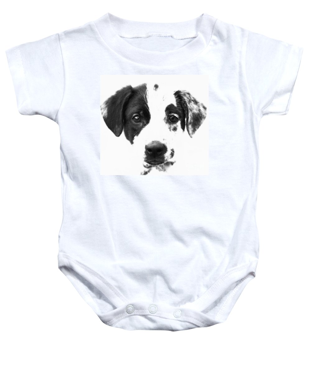 Dogs Baby Onesie featuring the photograph Karma by Amanda Barcon