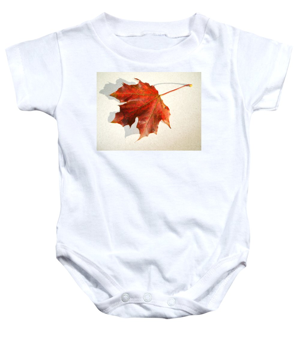 Leaf Baby Onesie featuring the photograph Leaf by Cliff Norton