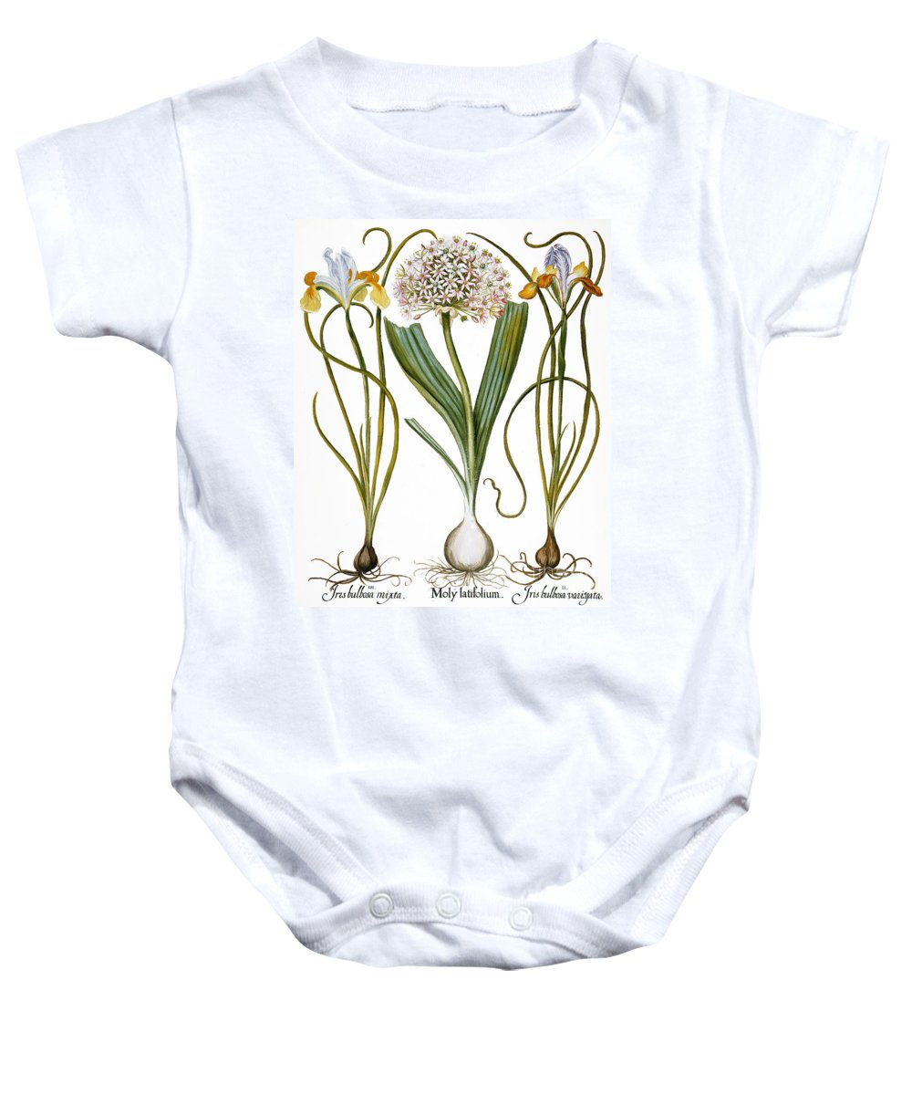 1613 Baby Onesie featuring the photograph Leek And Irises, 1613 by Granger