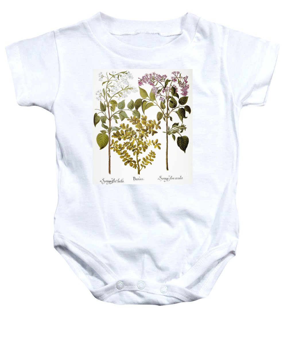 1613 Baby Onesie featuring the photograph Lilac And Box, 1613 by Granger
