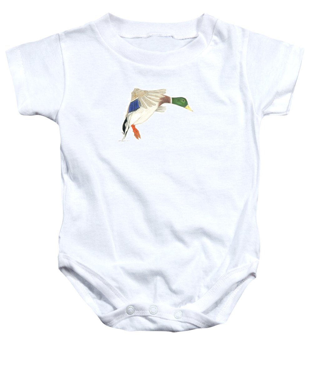 Duck Baby Onesie featuring the drawing Mallard Drake by Sara Stevenson