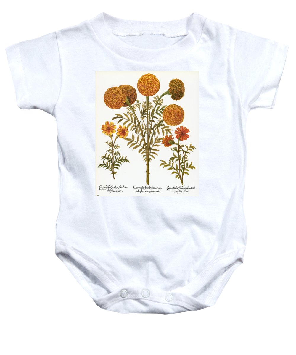 1613 Baby Onesie featuring the photograph Marigolds, 1613 by Granger