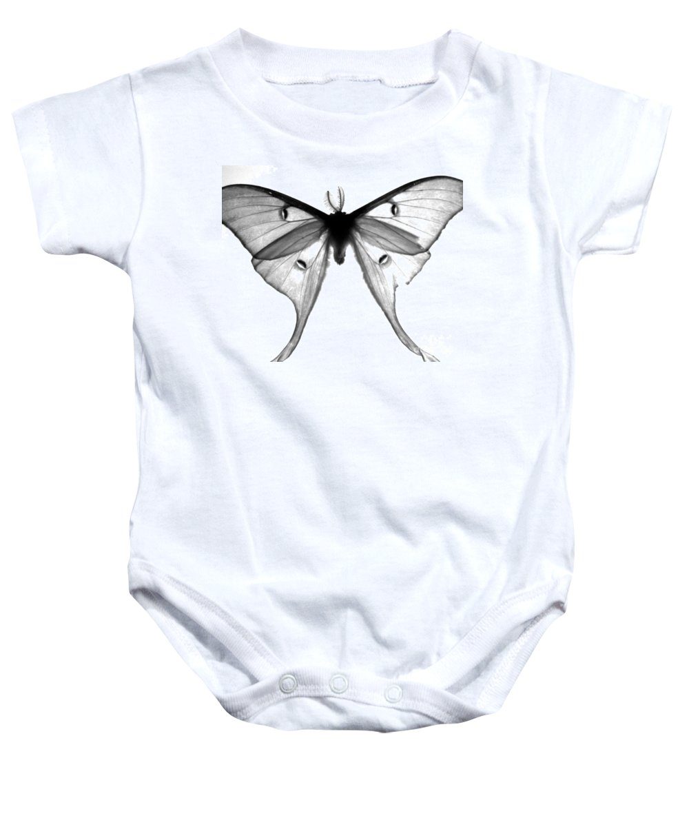 Moth Baby Onesie featuring the photograph Moth by Amanda Barcon