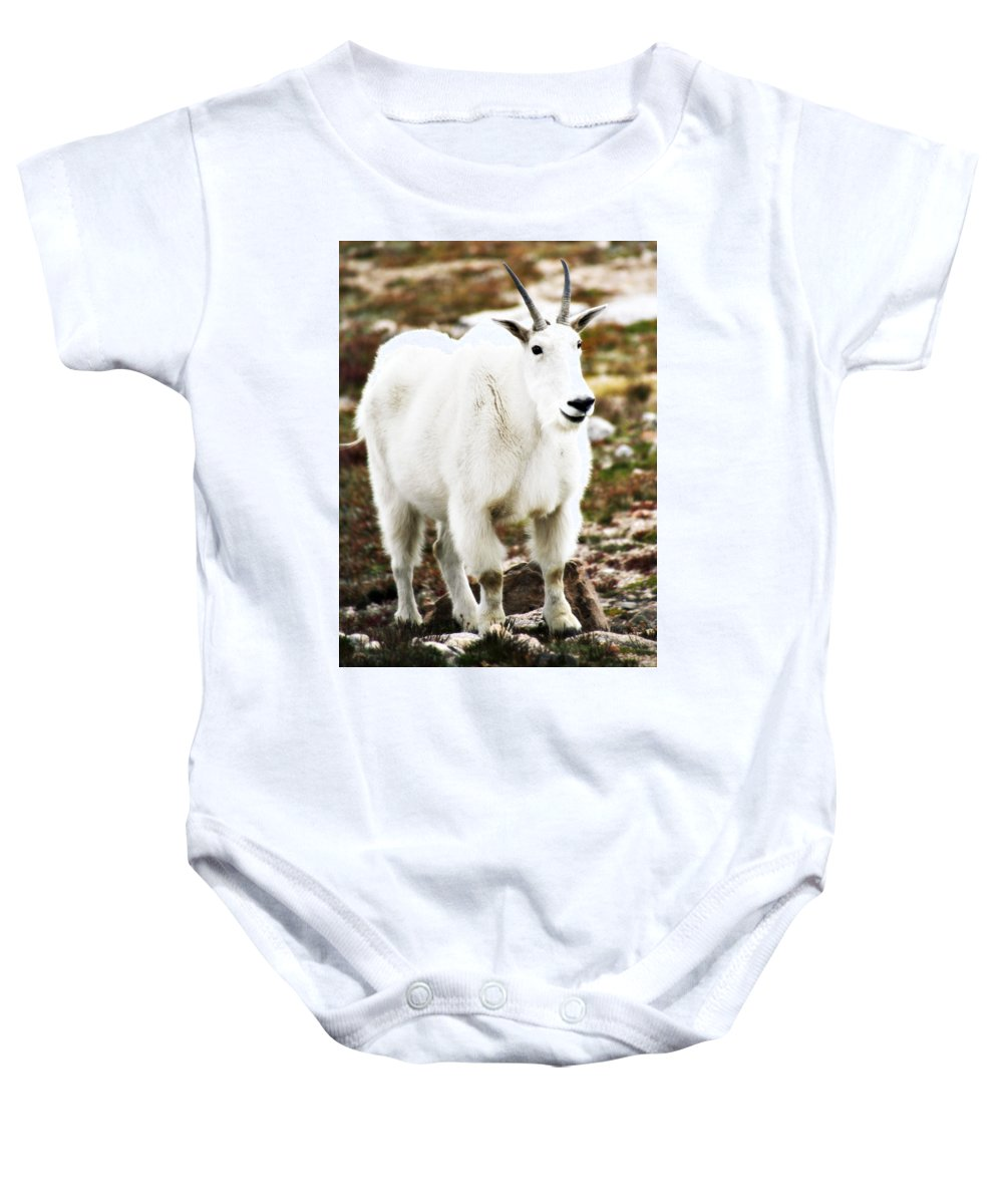 Animal Baby Onesie featuring the photograph Mountain Goat by Marilyn Hunt