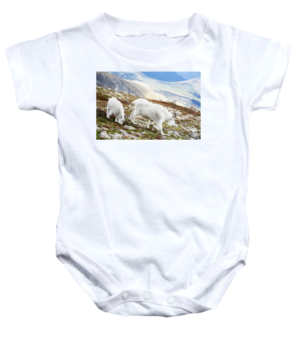 Mountain Baby Onesie featuring the photograph Mountain Goats 1 by Marilyn Hunt