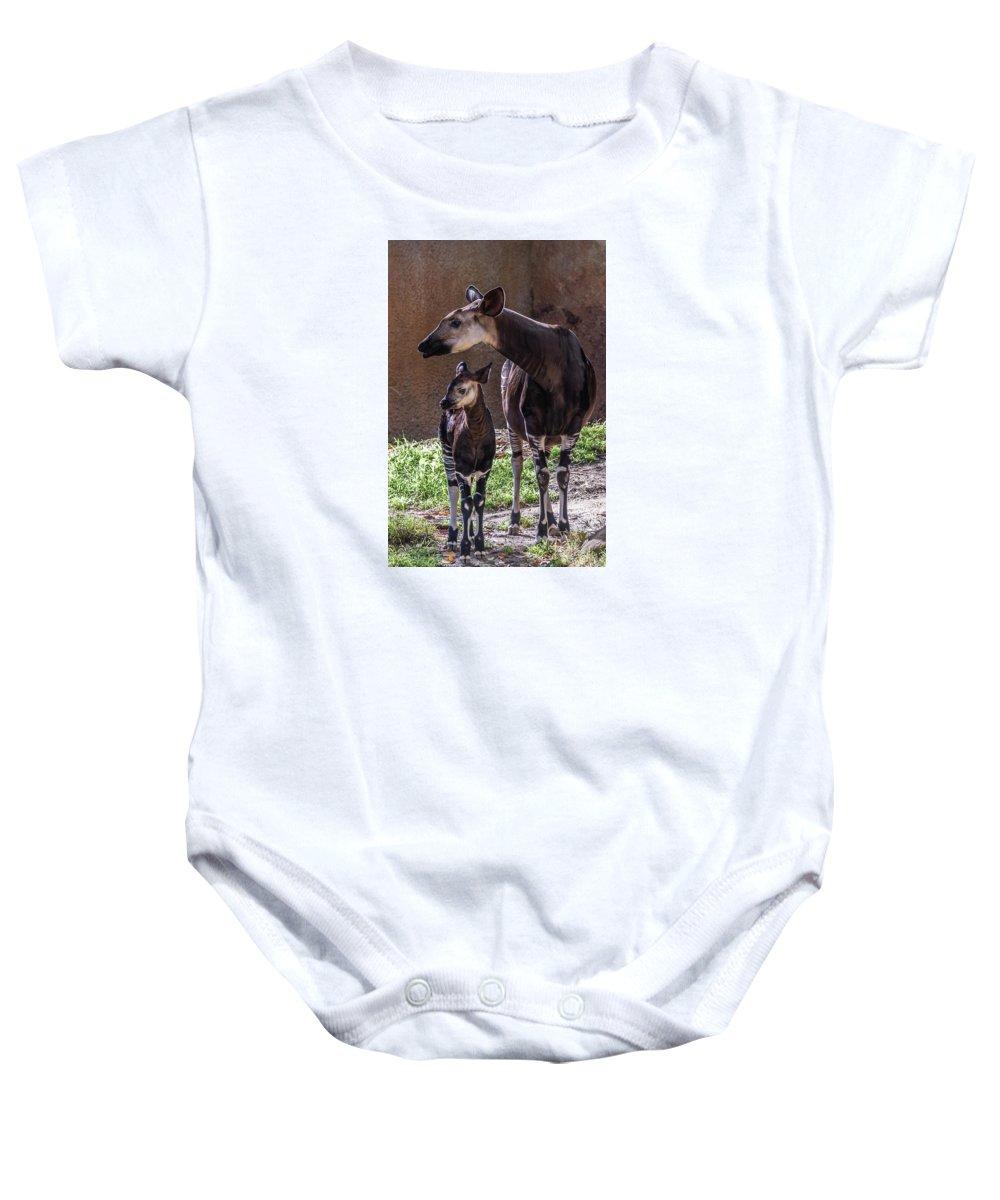 Okapi Baby Onesie featuring the photograph Okapi by Martin Alonso