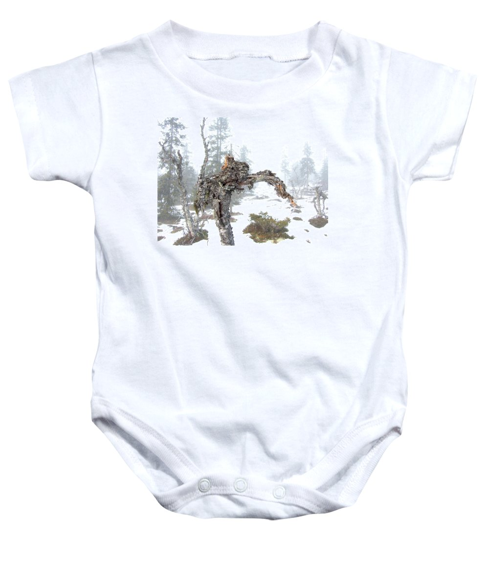 Tree Baby Onesie featuring the photograph Old Tree by Are Lund