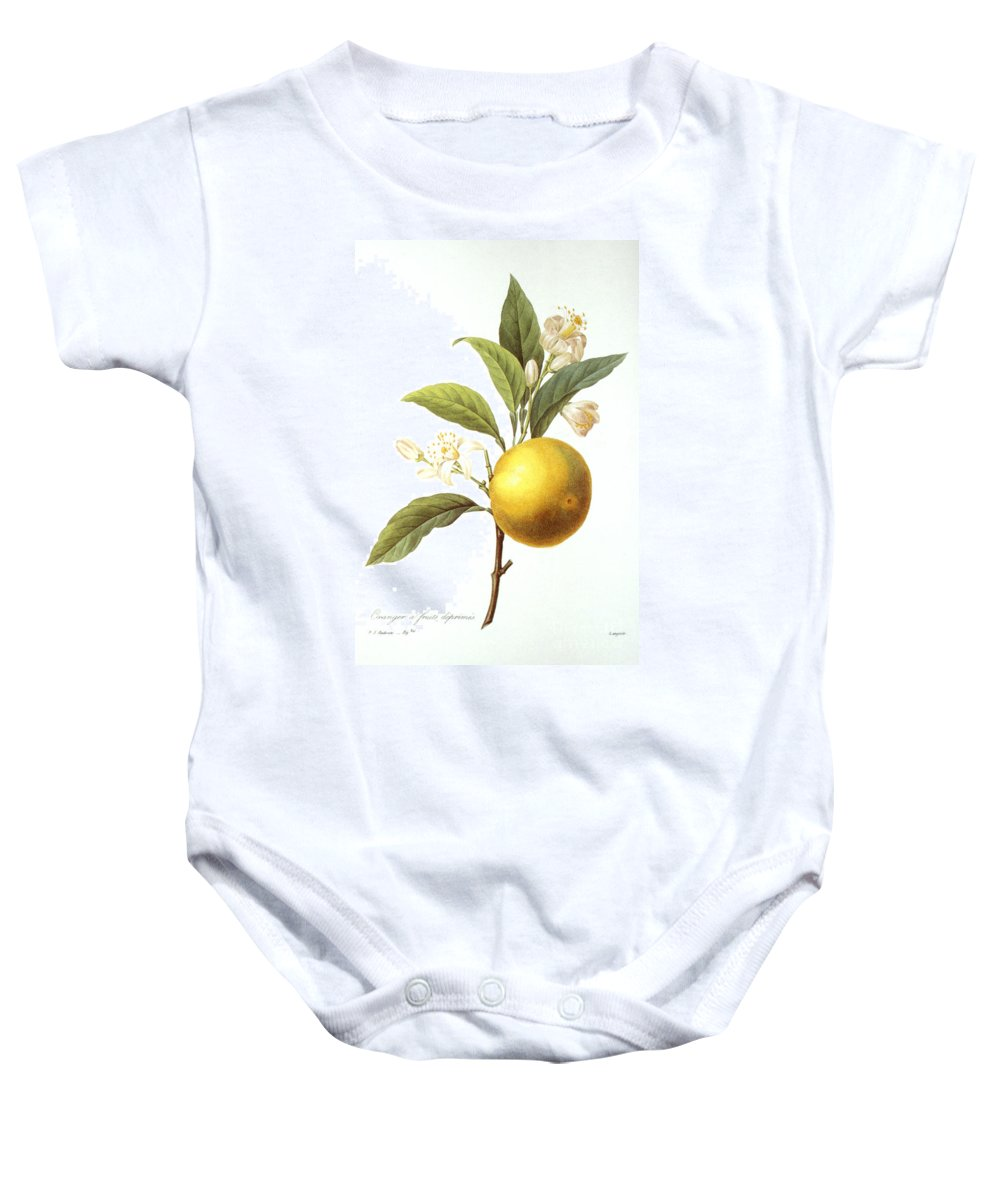 Biology Baby Onesie featuring the photograph Orange Tree by Granger