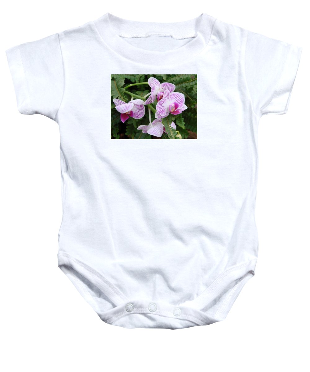 Orchid Baby Onesie featuring the photograph Orchid Pink by Ed Mosier