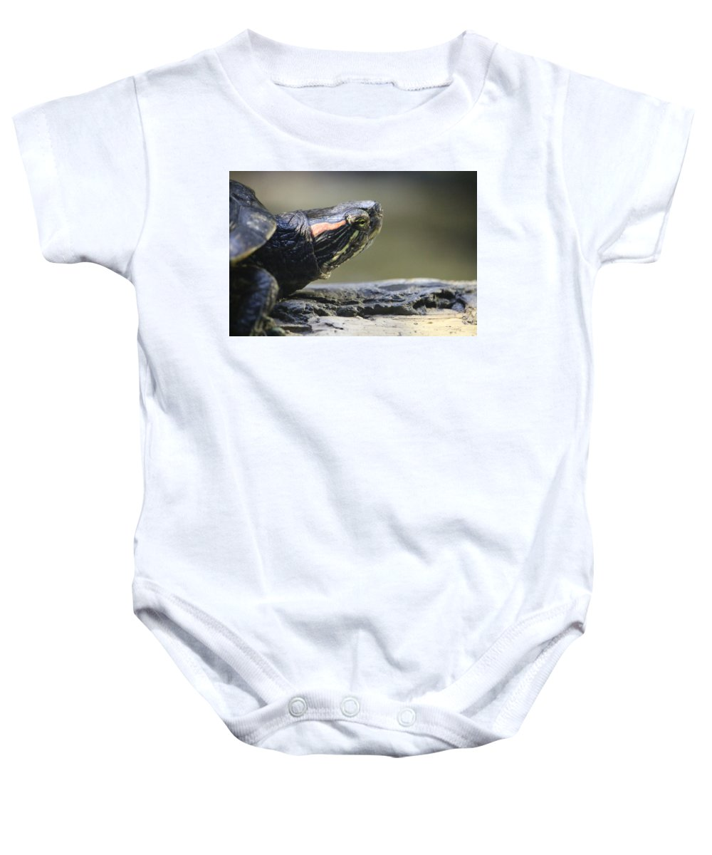 Baby Onesie featuring the photograph Painted Turtle by Crooked Cat Art and Photography