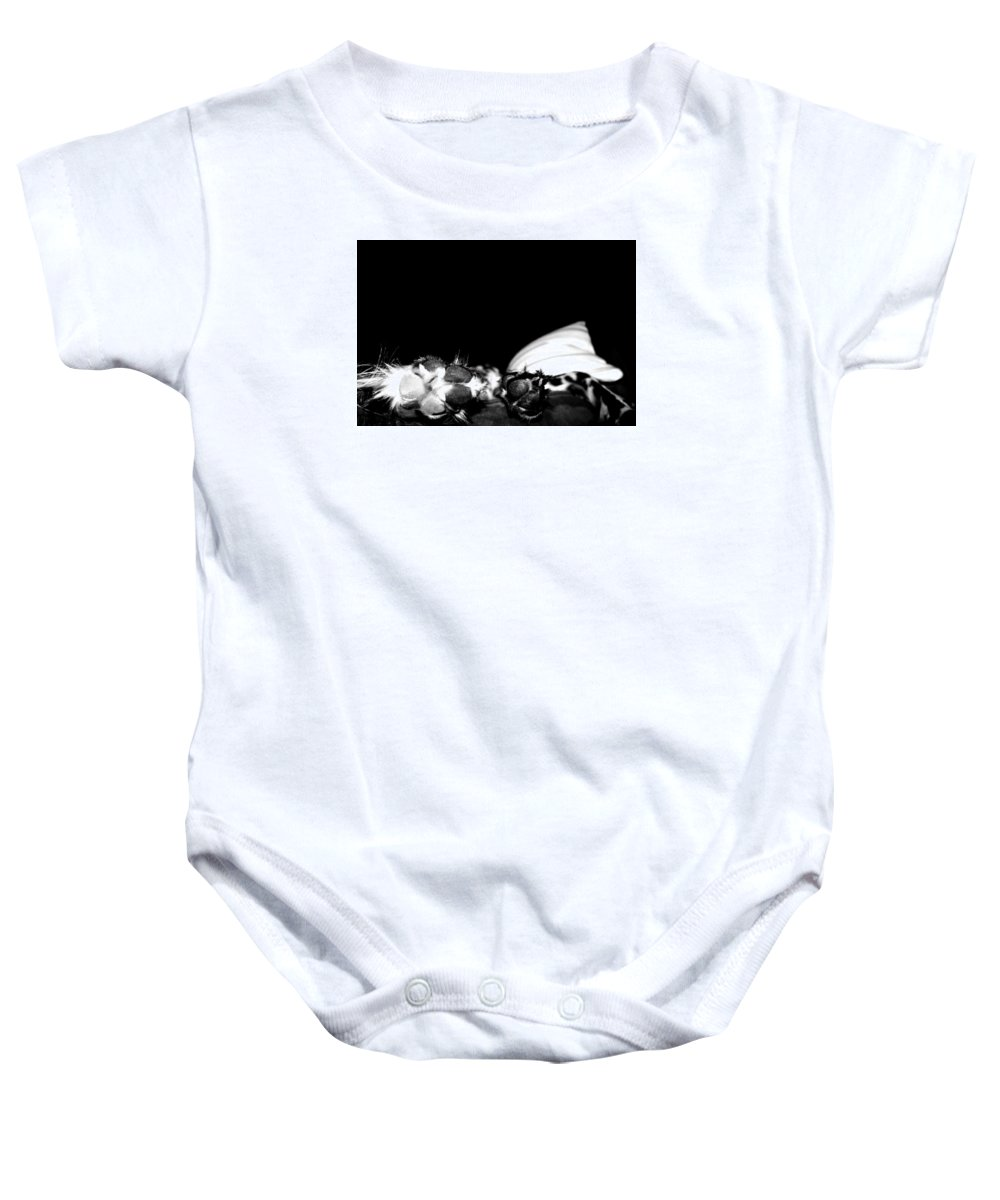 Dog Baby Onesie featuring the photograph Pawed by Marley Hornewer