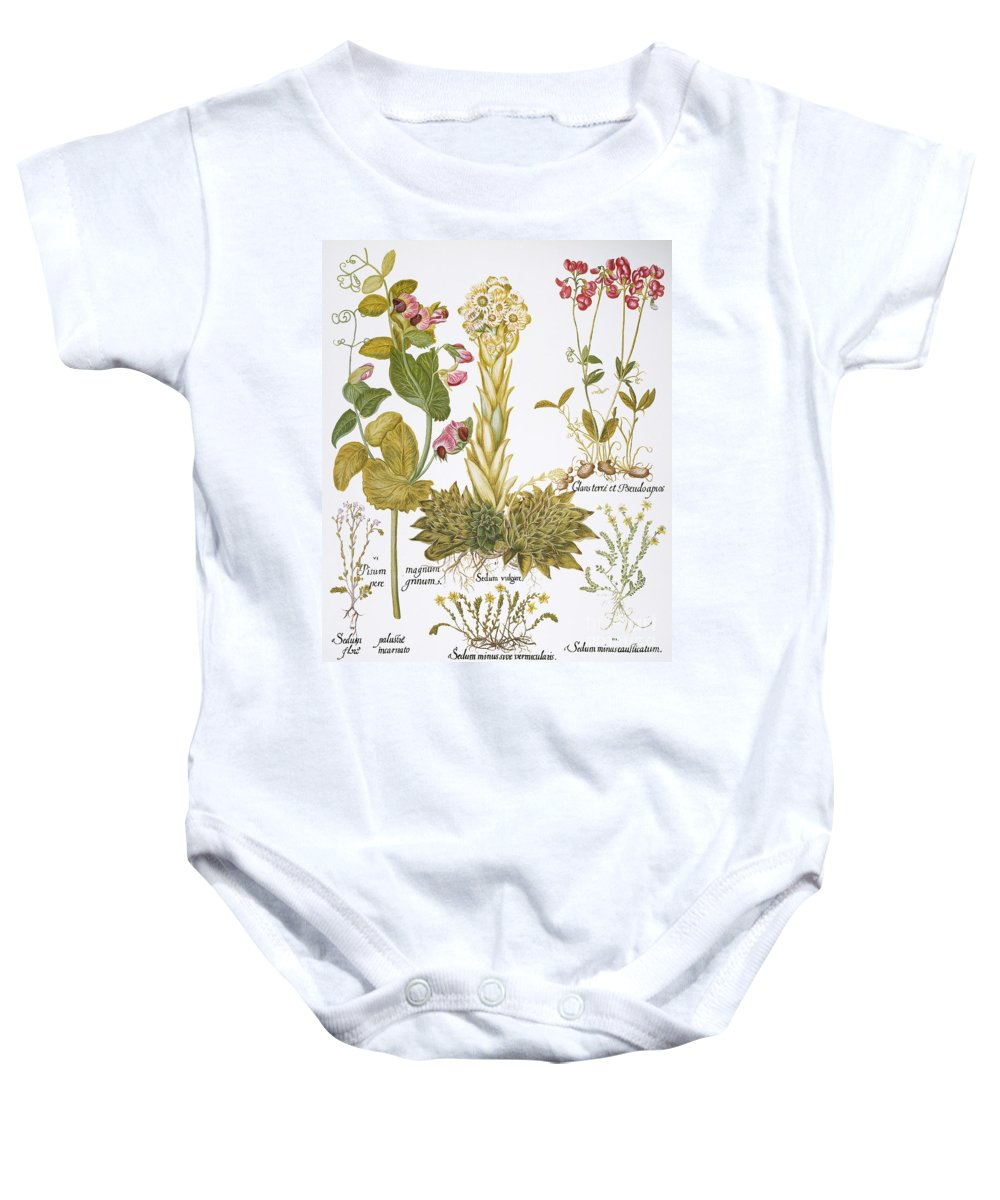 1613 Baby Onesie featuring the photograph Peanuts, 1613 by Granger