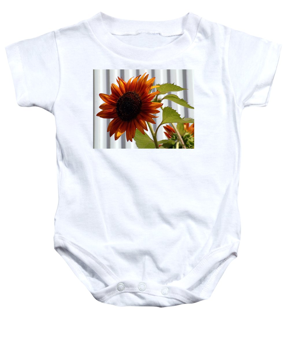 Brown Baby Onesie featuring the photograph Peerless by RC DeWinter