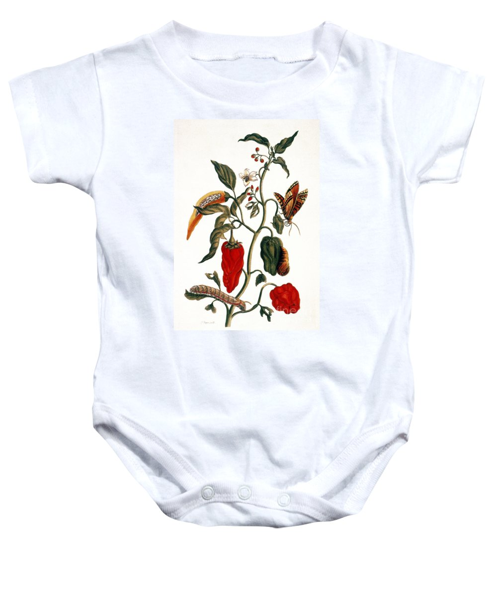 1726 Baby Onesie featuring the photograph Pepper Plant by Granger
