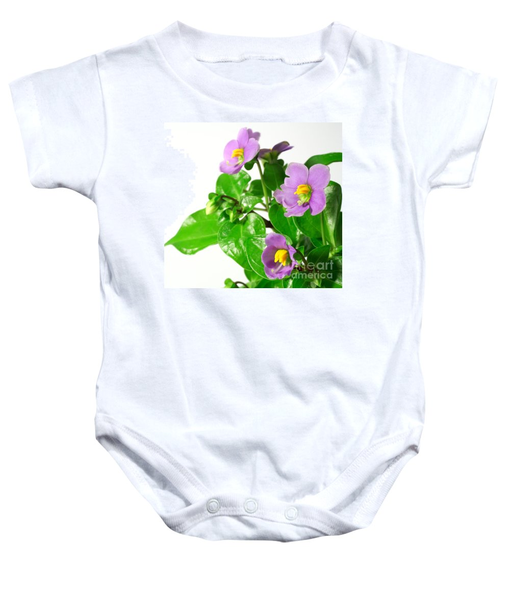 Closeup Baby Onesie featuring the photograph Persian Violets by Gaspar Avila