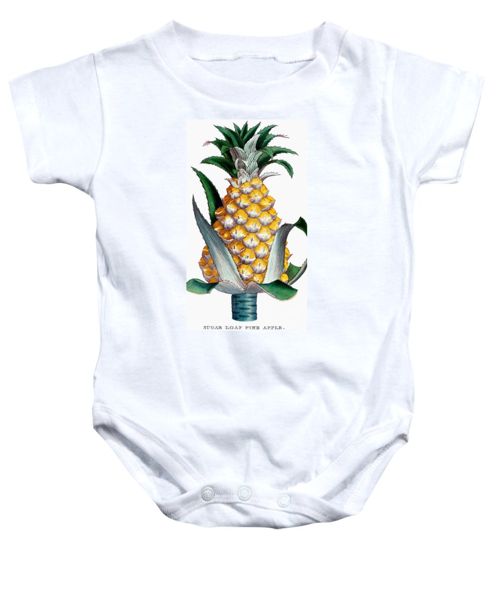 1789 Baby Onesie featuring the photograph Pineapple, 1789 by Granger
