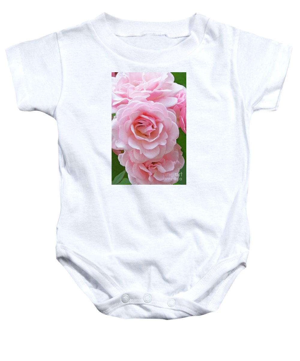 Pink Roses Baby Onesie featuring the photograph Pink Rose Cluster IIi by Regina Geoghan