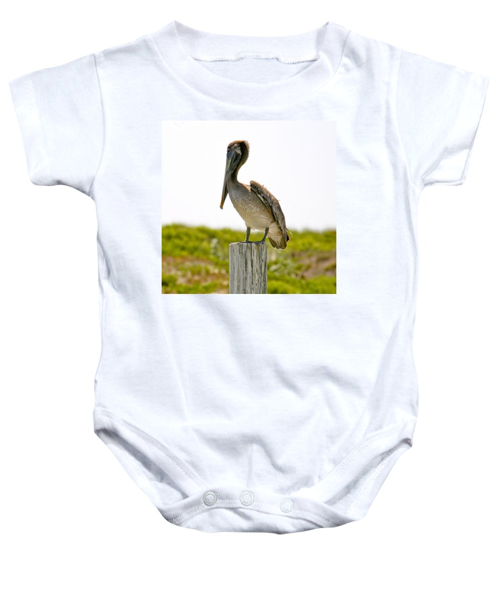 Pelican Baby Onesie featuring the photograph Pretty Pelican by Marilyn Hunt