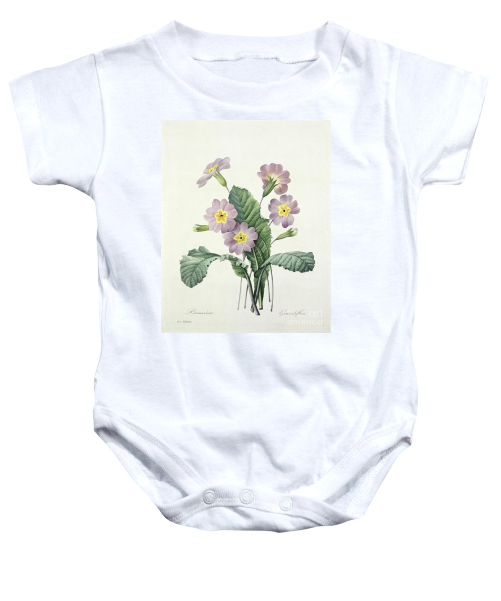 Primula Baby Onesie featuring the drawing Primrose by Pierre Joseph Redoute