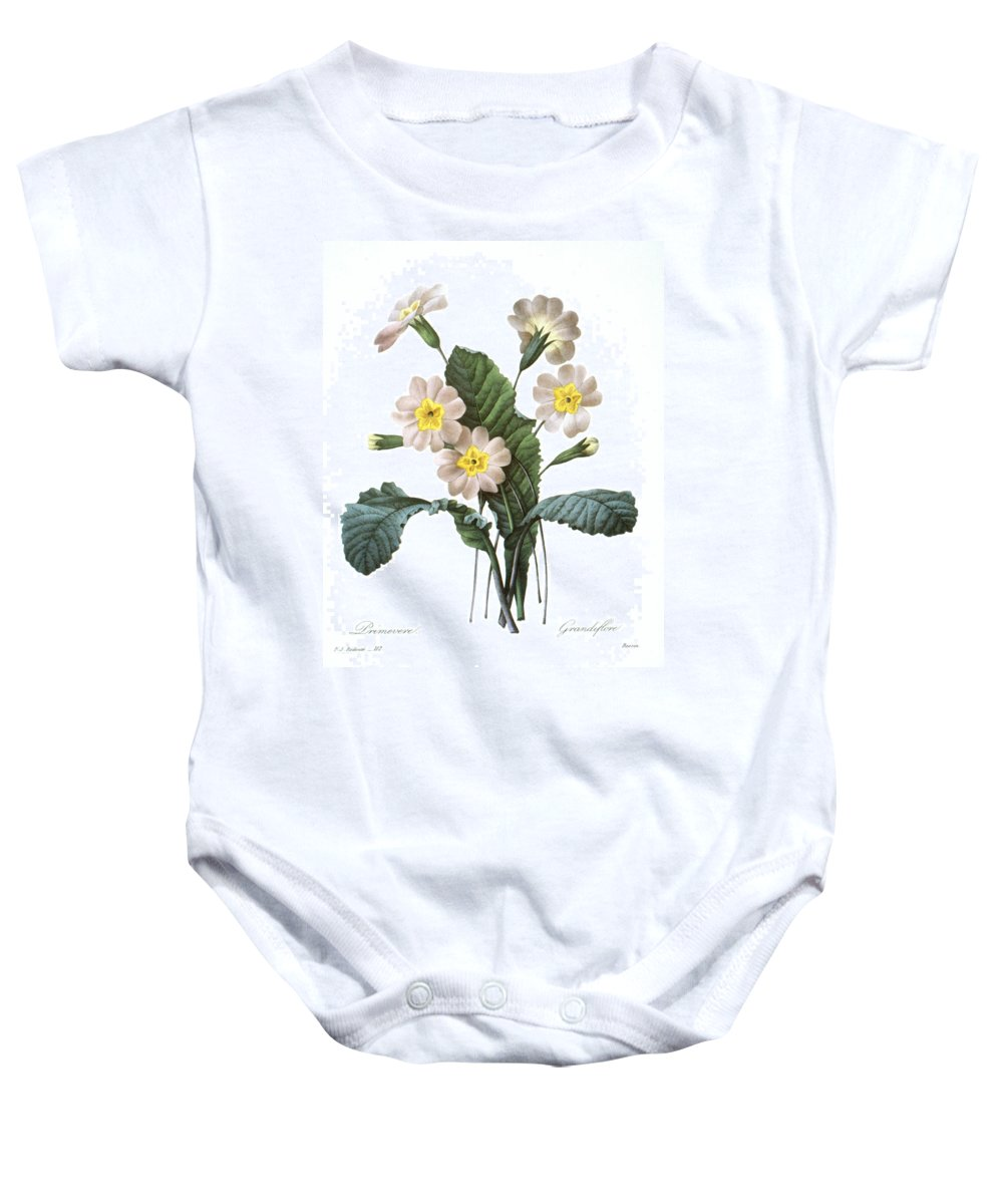 1833 Baby Onesie featuring the photograph Primrose (primula Aucalis) by Granger