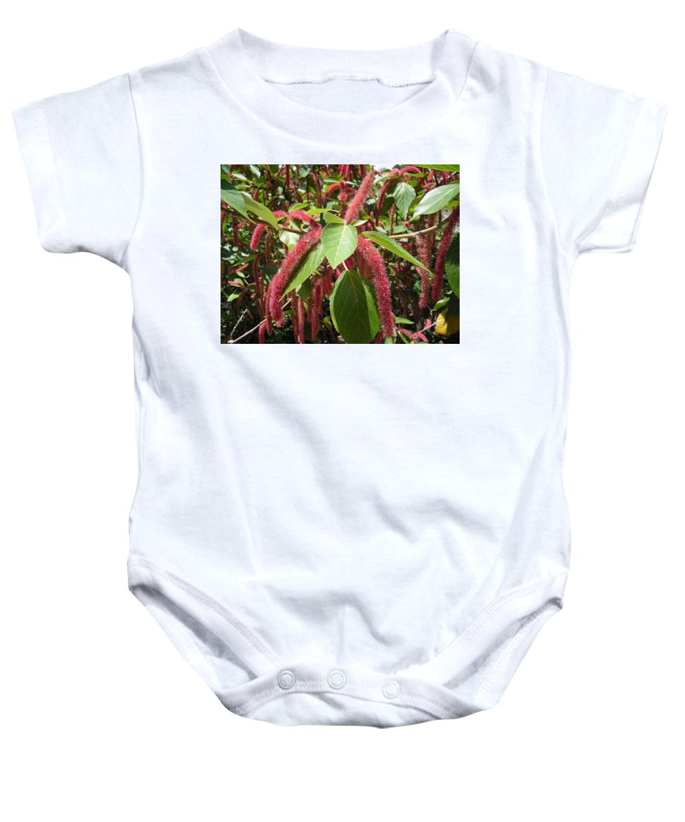 Tree Baby Onesie featuring the photograph Red Fluffy Flower by Stacey Marshall