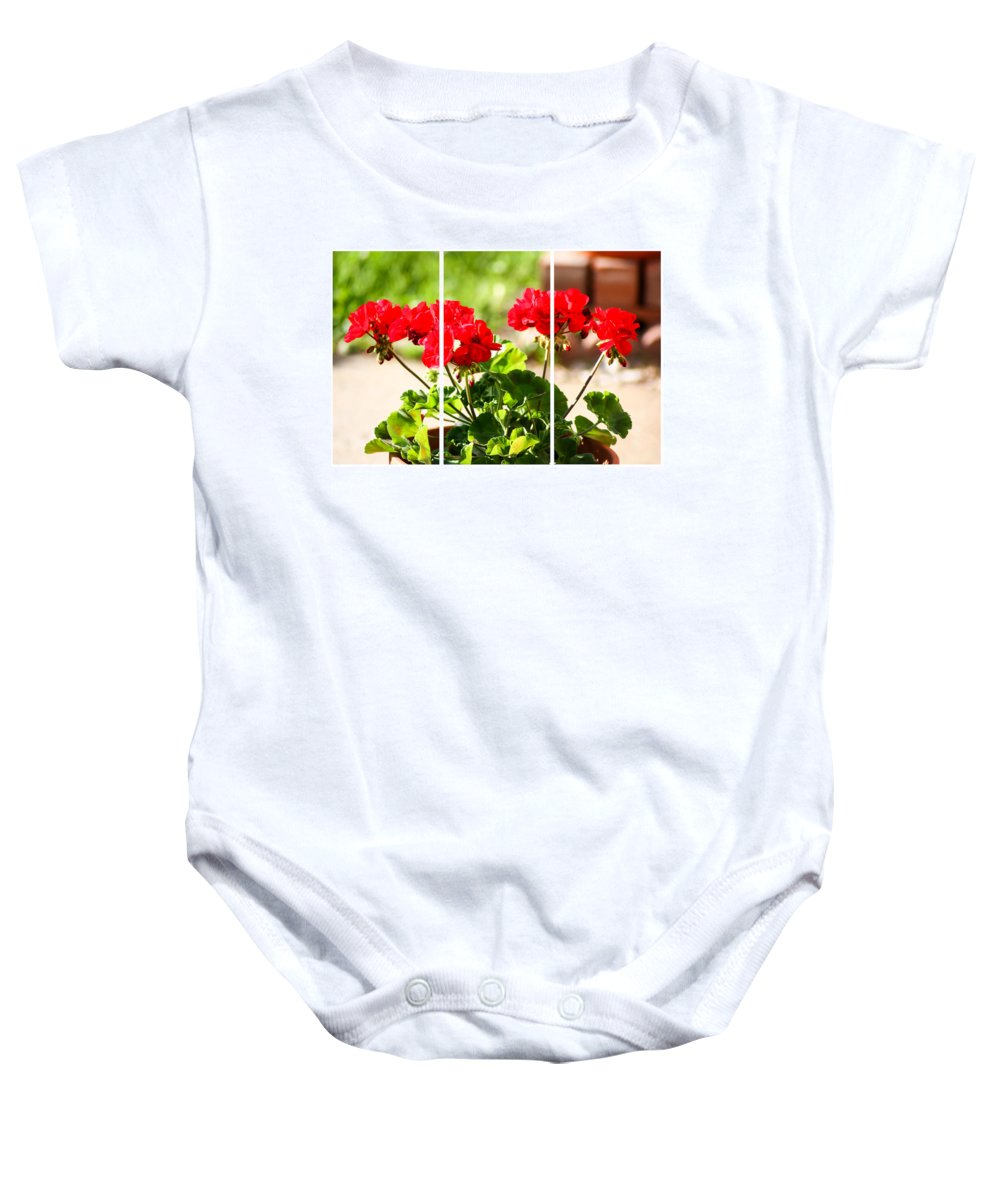 Red Geraniums Triptych Baby Onesie featuring the photograph Red Geraniums Triptych by Cynthia Woods
