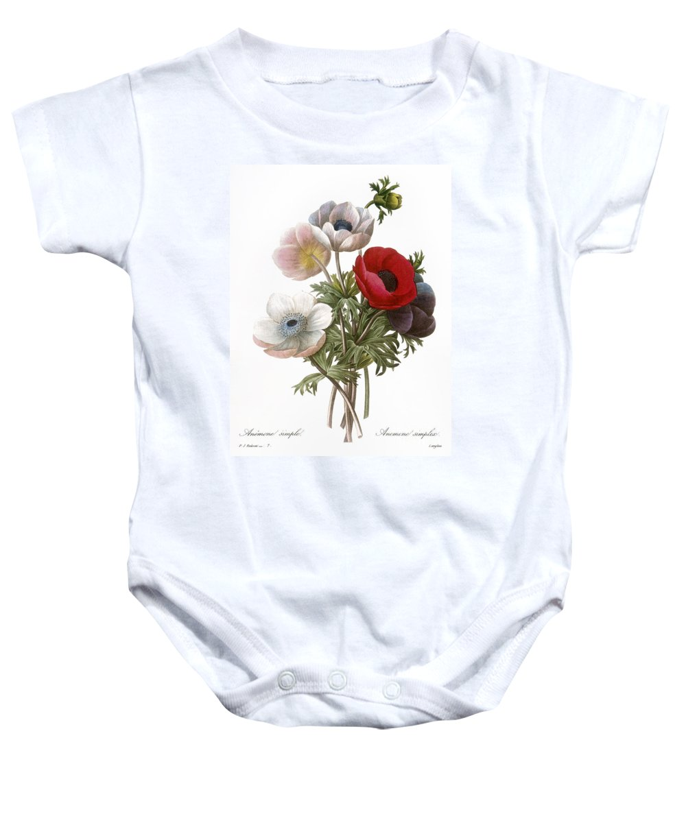 1833 Baby Onesie featuring the photograph Redoute: Anemone, 1833 by Granger
