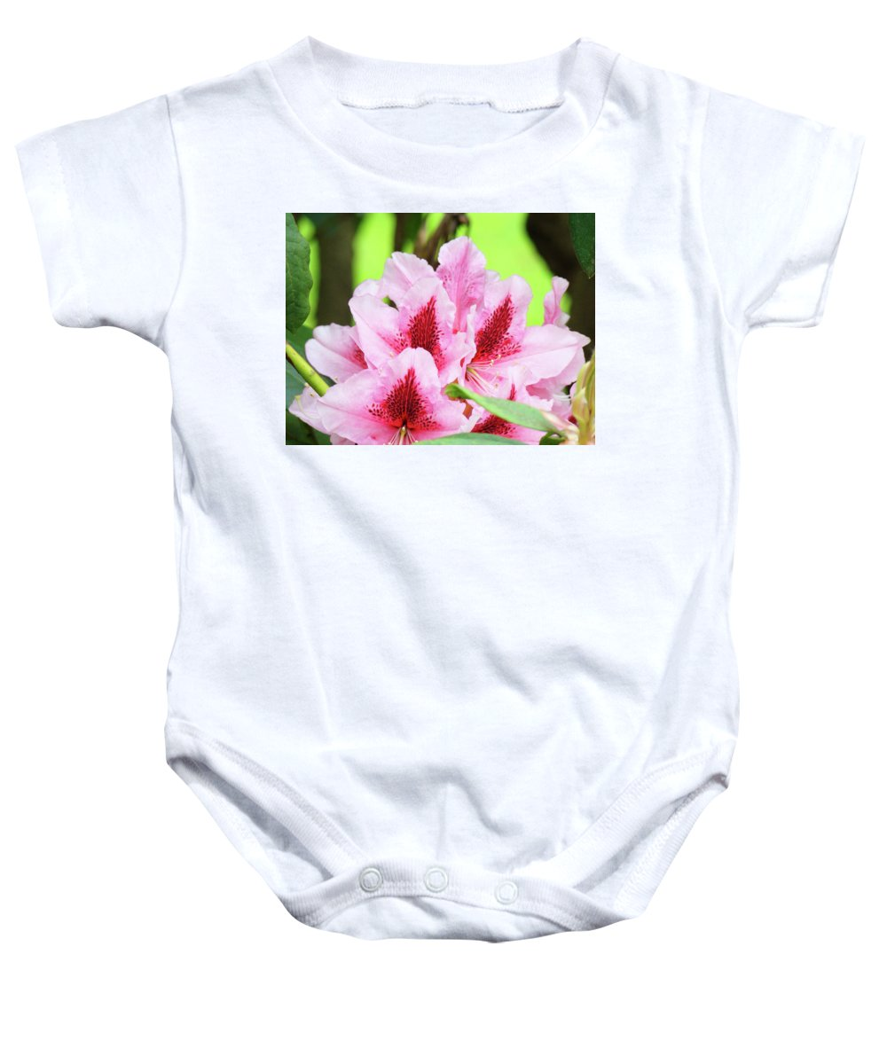Rhodie Baby Onesie featuring the photograph Rhododendron Floral Art Prints Rhodies Flowers Canvas Baslee Troutman by Baslee Troutman