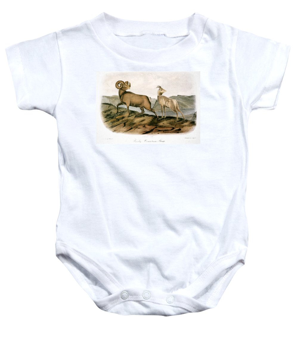 1846 Baby Onesie featuring the photograph Rocky Mountain Sheep, 1846 by Granger