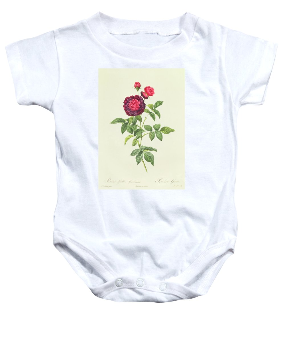 Rosa Baby Onesie featuring the drawing Rosa Gallica Gueriniana by Pierre Joseph Redoute
