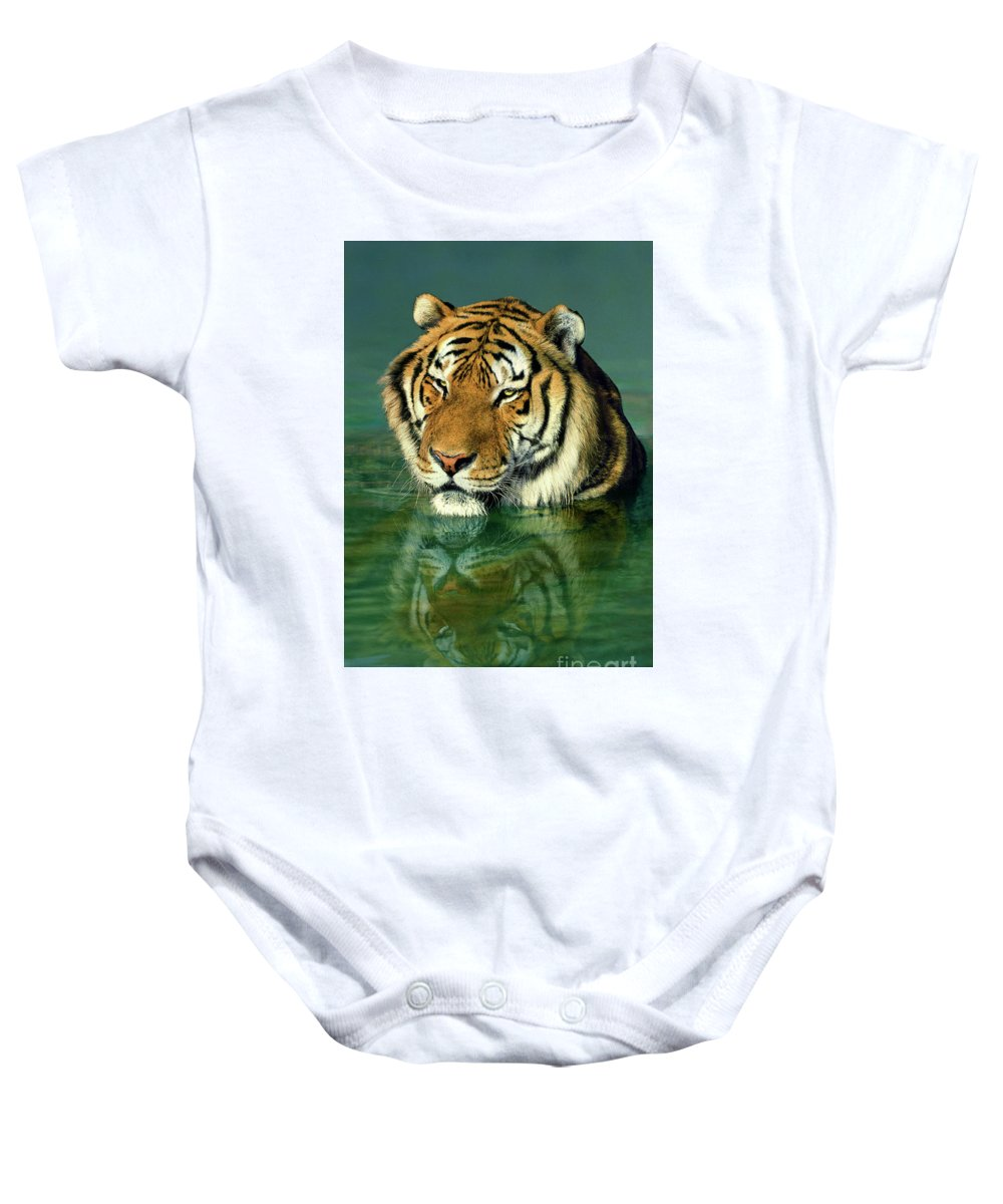 Siberian Tiger Baby Onesie featuring the photograph Siberian Tiger Reflection Wildlife Rescue by Dave Welling