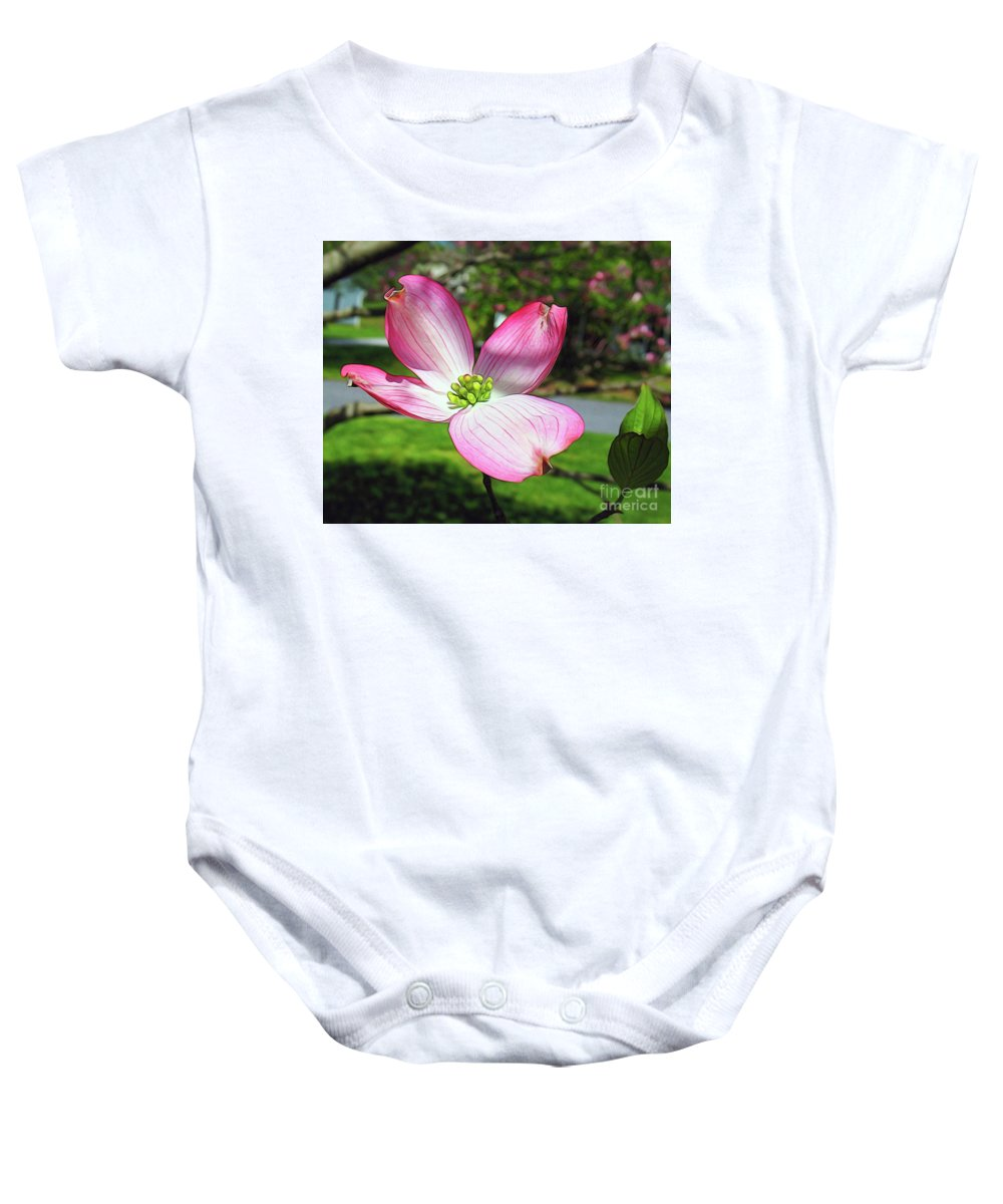 Singled Out Baby Onesie featuring the photograph Singled Out by Patti Whitten