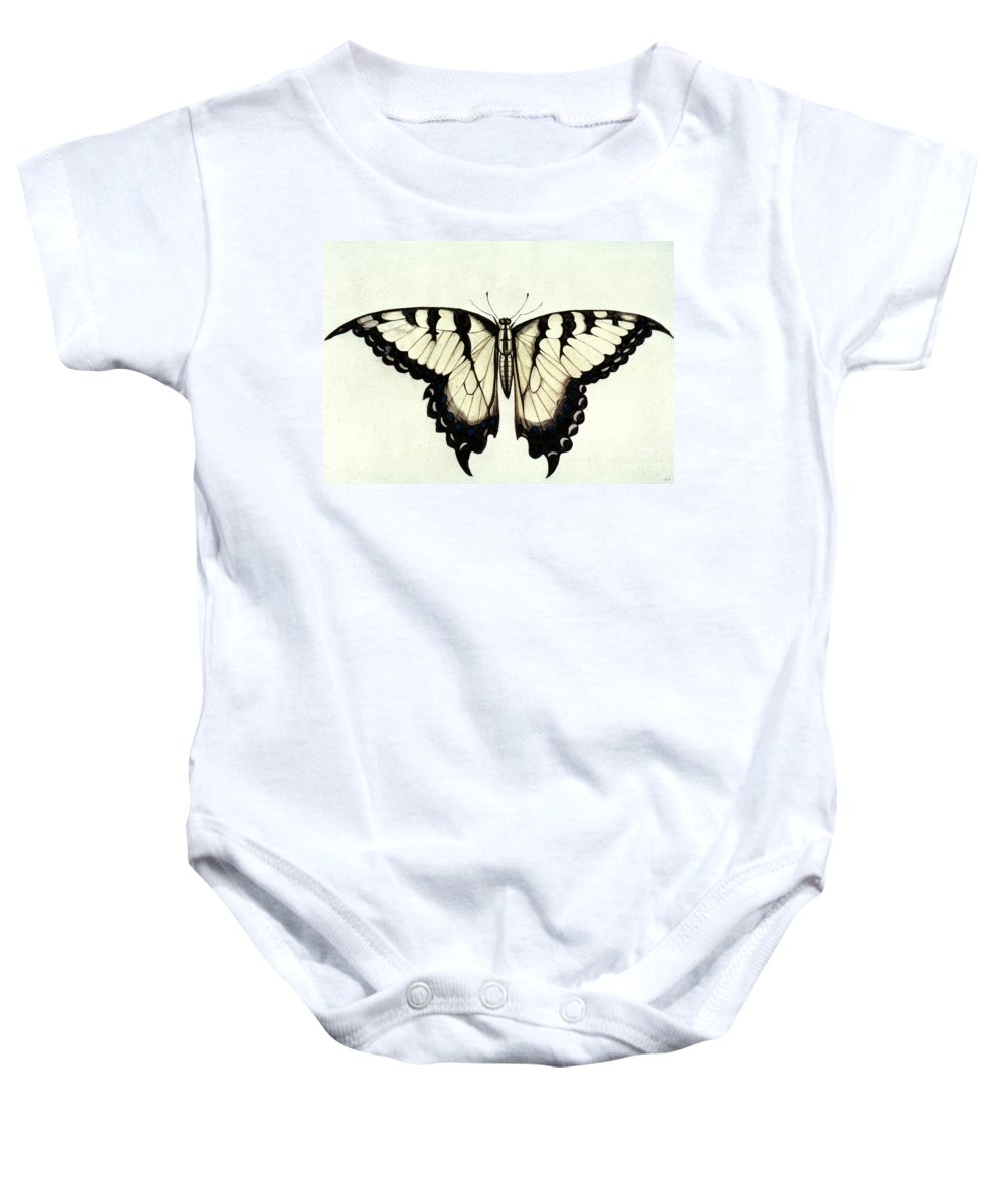 1585 Baby Onesie featuring the photograph Swallow-tail Butterfly by Granger