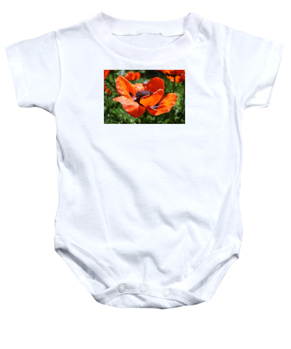 Poppies Baby Onesie featuring the photograph Taos New Mexico Poppy by Judithann O'Toole
