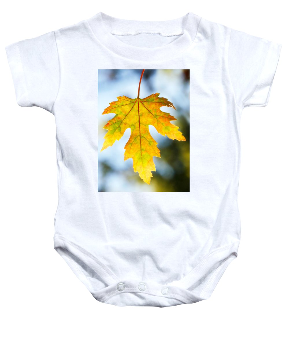 Maple Baby Onesie featuring the photograph The Maple Leaf by Marilyn Hunt