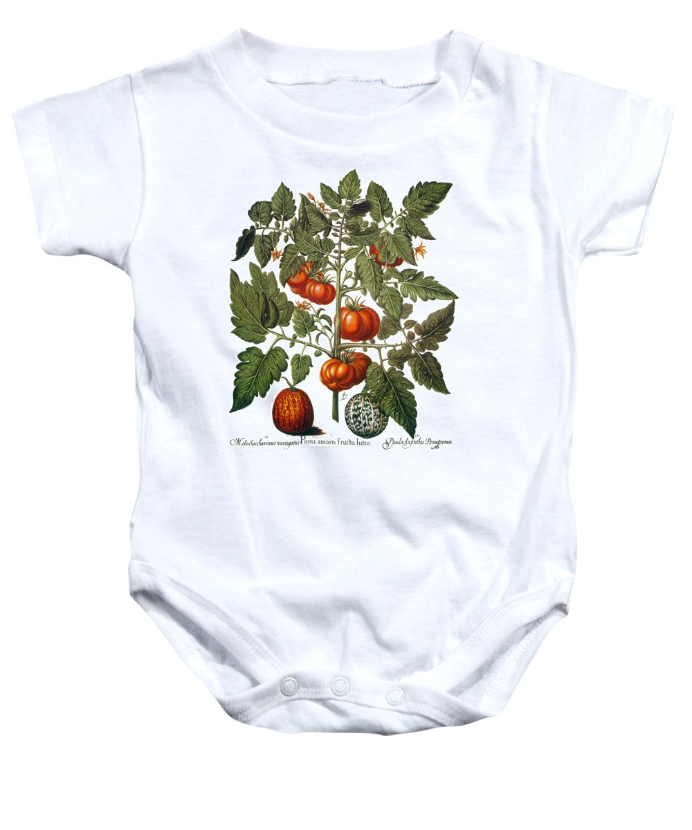 1613 Baby Onesie featuring the photograph Tomato & Watermelon 1613 by Granger