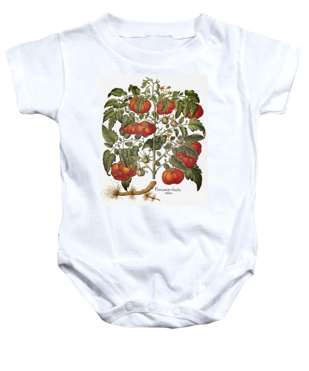 1613 Baby Onesie featuring the photograph Tomato, 1613 by Granger
