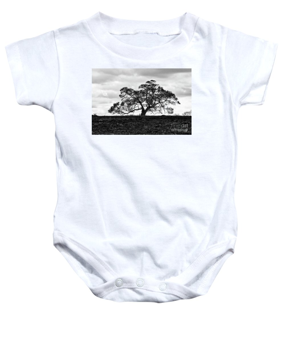 Oak Tree Baby Onesie featuring the photograph Tortue Oak by Scott Pellegrin