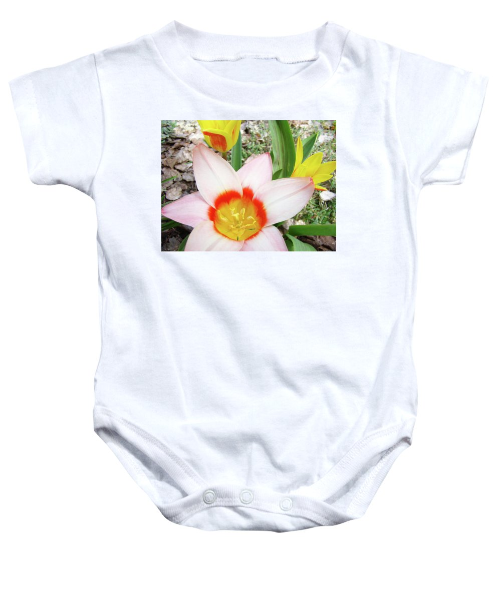 �tulips Artwork� Baby Onesie featuring the photograph Tulips Artwork 9 Spring Floral Pink Tulip Flowers Art Prints by Baslee Troutman