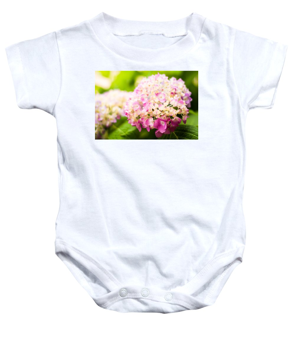 Hydrangea Baby Onesie featuring the photograph Warm Light by Parker Cunningham