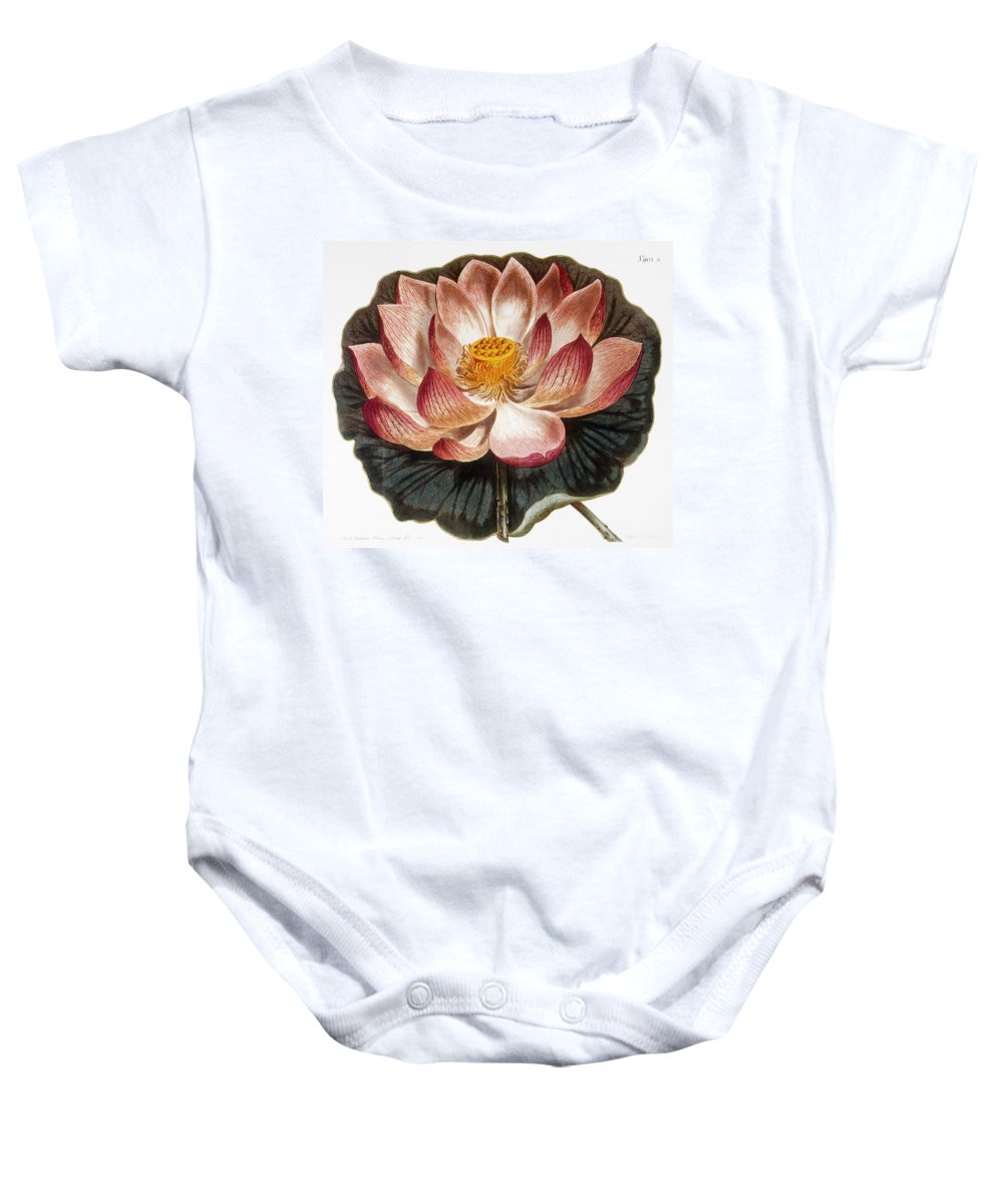 1806 Baby Onesie featuring the photograph Water Lily, 1806 by Granger