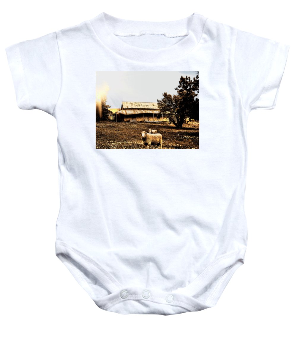 Sheep Baby Onesie featuring the photograph We Live Here.... by Douglas Barnard