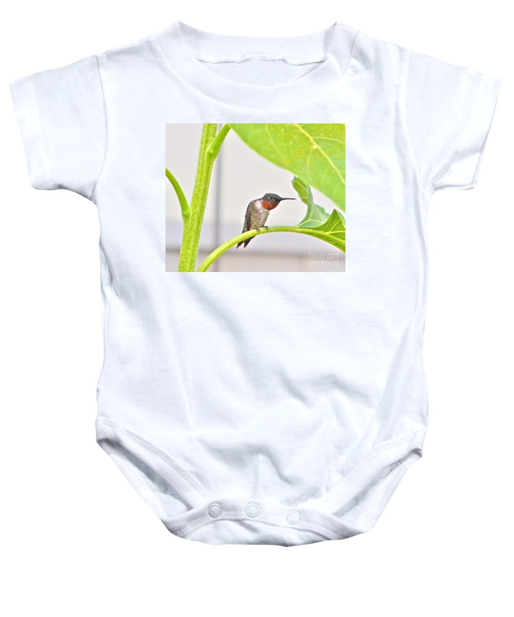 Humming Bird Baby Onesie featuring the photograph What by Robert Pearson