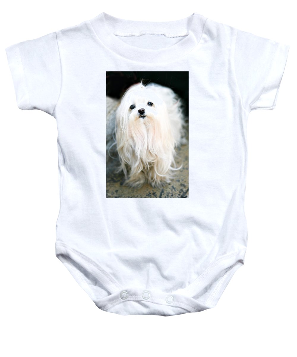 Small Baby Onesie featuring the photograph White Fluff by Marilyn Hunt