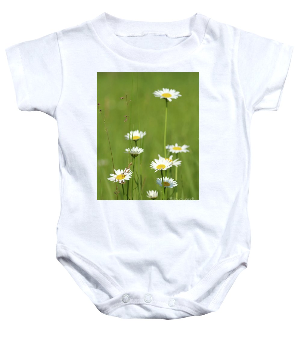 Camomile Baby Onesie featuring the photograph White Wild Flowers Nature Spring Scene by Goce Risteski