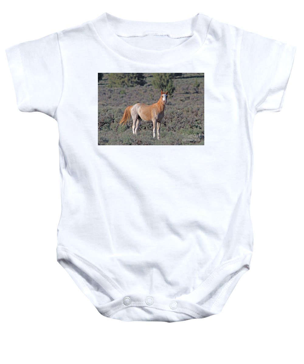 Wild Horse Baby Onesie featuring the photograph Wild Horse by Gary Wing