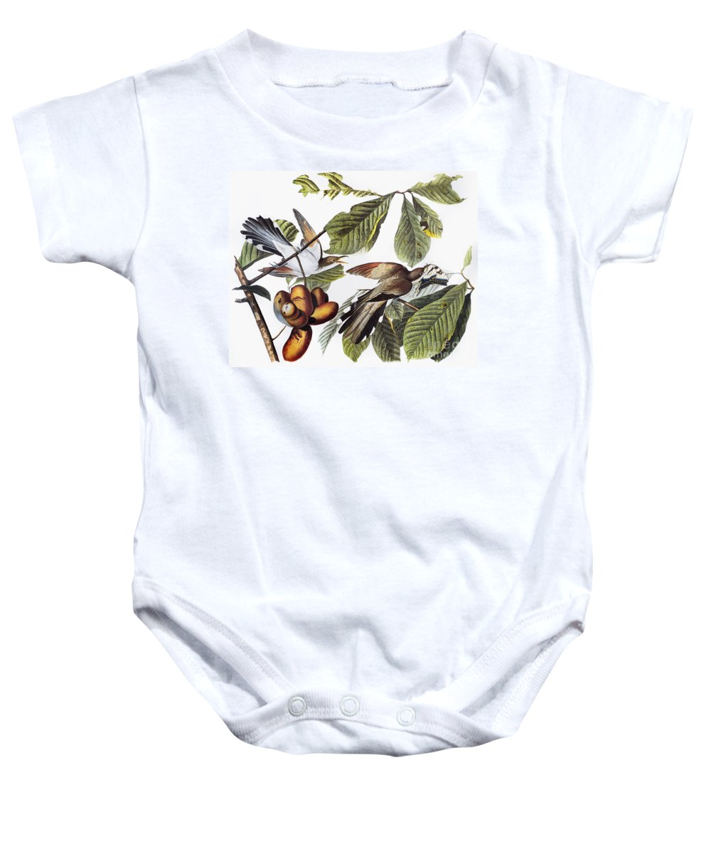 1827 Baby Onesie featuring the photograph Yellow-billed Cuckoo by Granger
