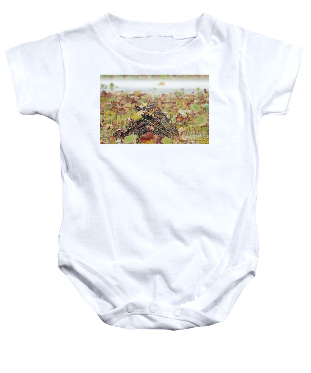 Mallard Baby Onesie featuring the photograph Queen Of The Mound by Nicole Engelhardt