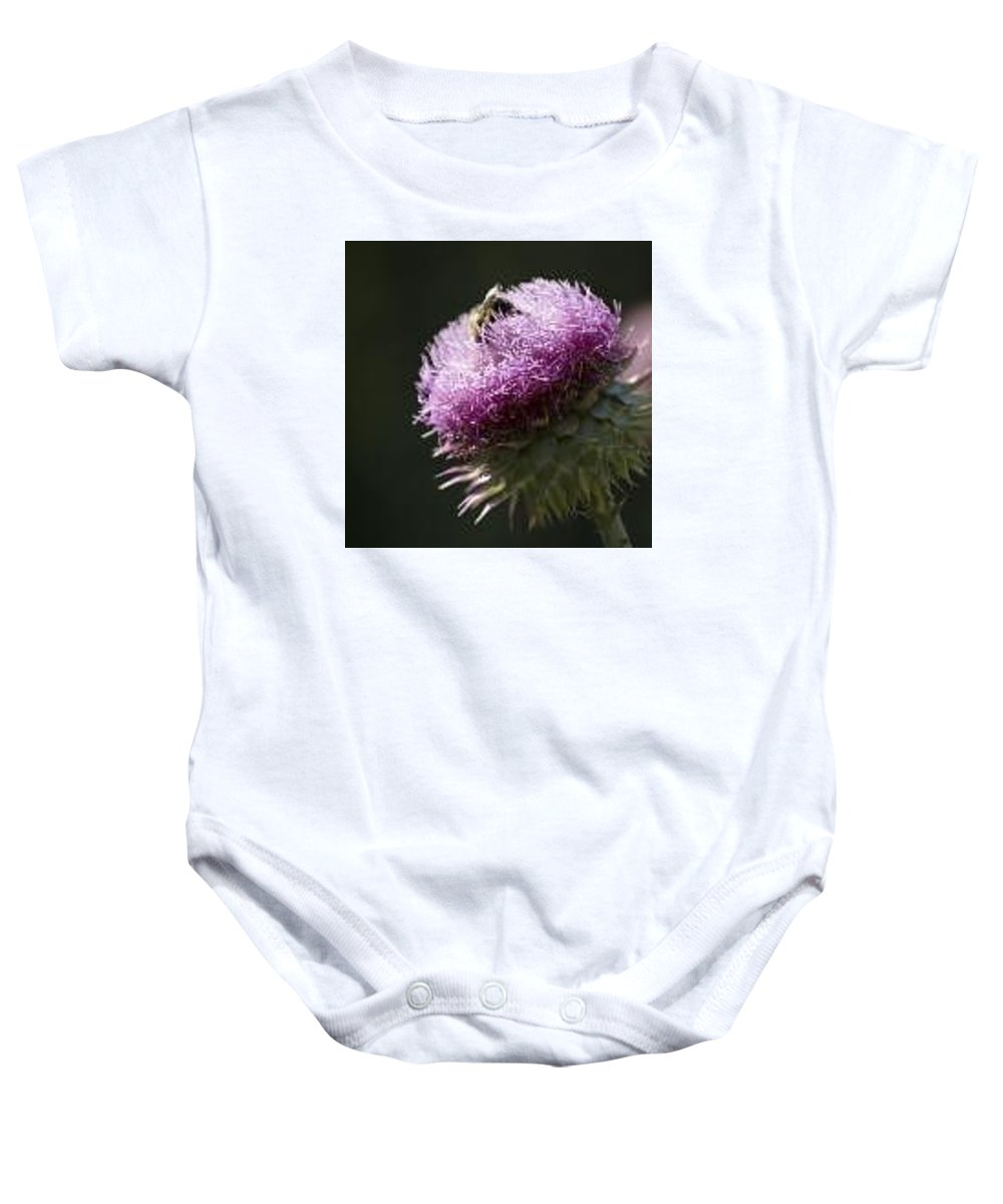 Bee Baby Onesie featuring the photograph Bee On Thistle by Nancy Ayanna Wyatt