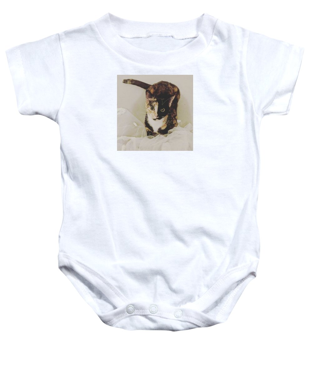 Cute Cat Baby Onesie featuring the photograph Meet Star by Star And Ray